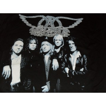 Aerosmith Blue Band